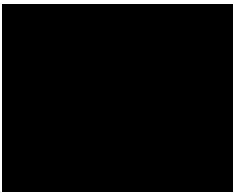 sisa 5
