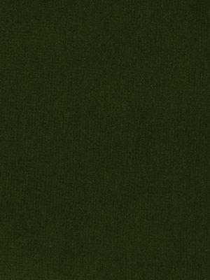 Terciopelo 100% Algodón de color verde musgo