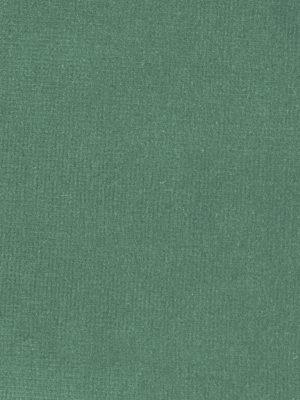 Terciopelo 100% algodón color aguamarina_6511